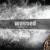 Wshand: Stunting under the influence